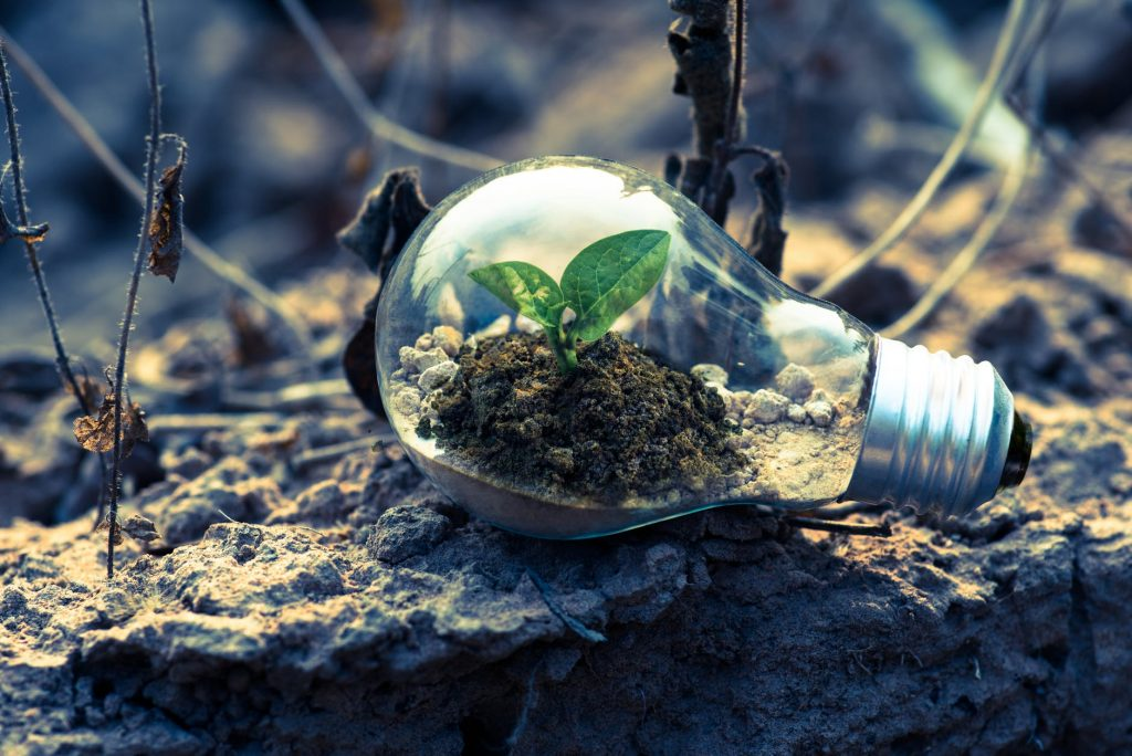 Going green should reduce your carbon footprint, and create a more productive working environment